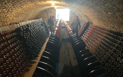 À la découverte des vins de Champagne