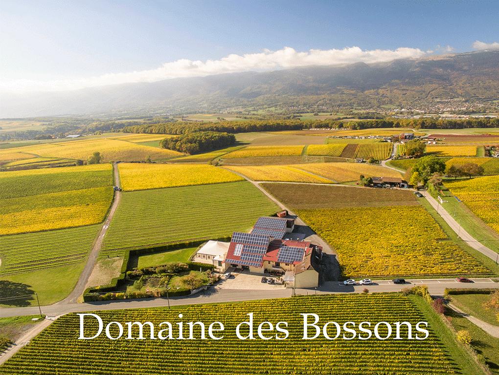 Domaine des Bossons