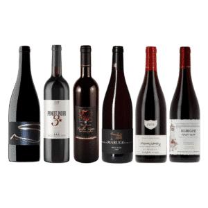coffret vins pinot noir