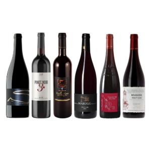 Dégustation Pinot Noir